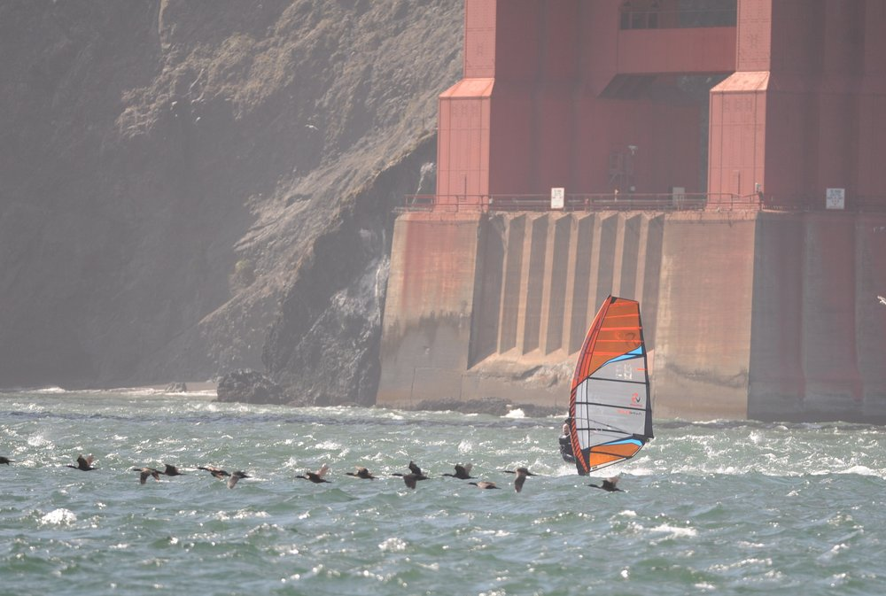 Windsurfer underneath the Golden Gate Bridge.