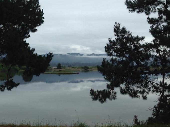 Arcata, California. Photo by Dayamudra Ann Dennehy