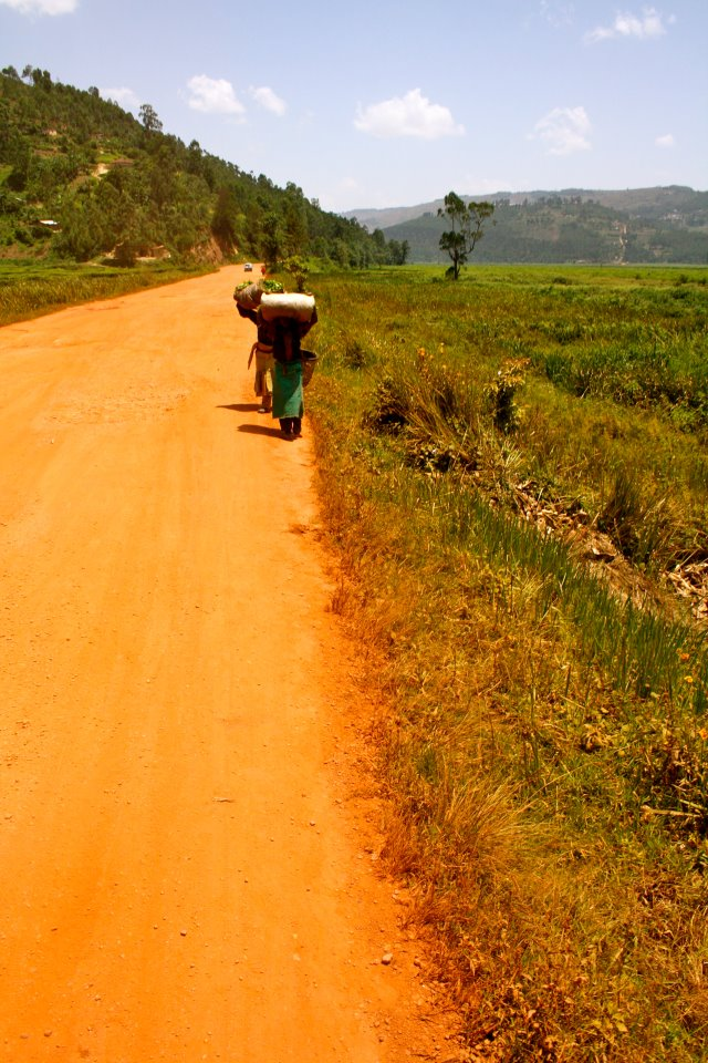carrying-tea-leaves-rwanda.jpg