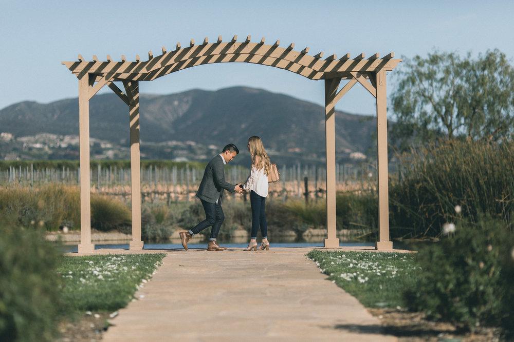 Sam & Rachael Proposal-13.jpg