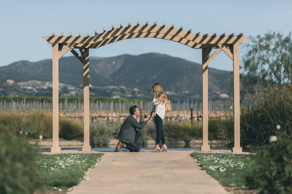 Sam & Rachael Proposal-18.jpg