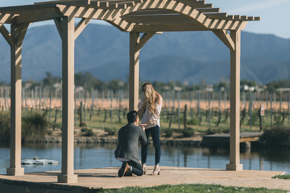 Sam & Rachael Proposal-21.jpg