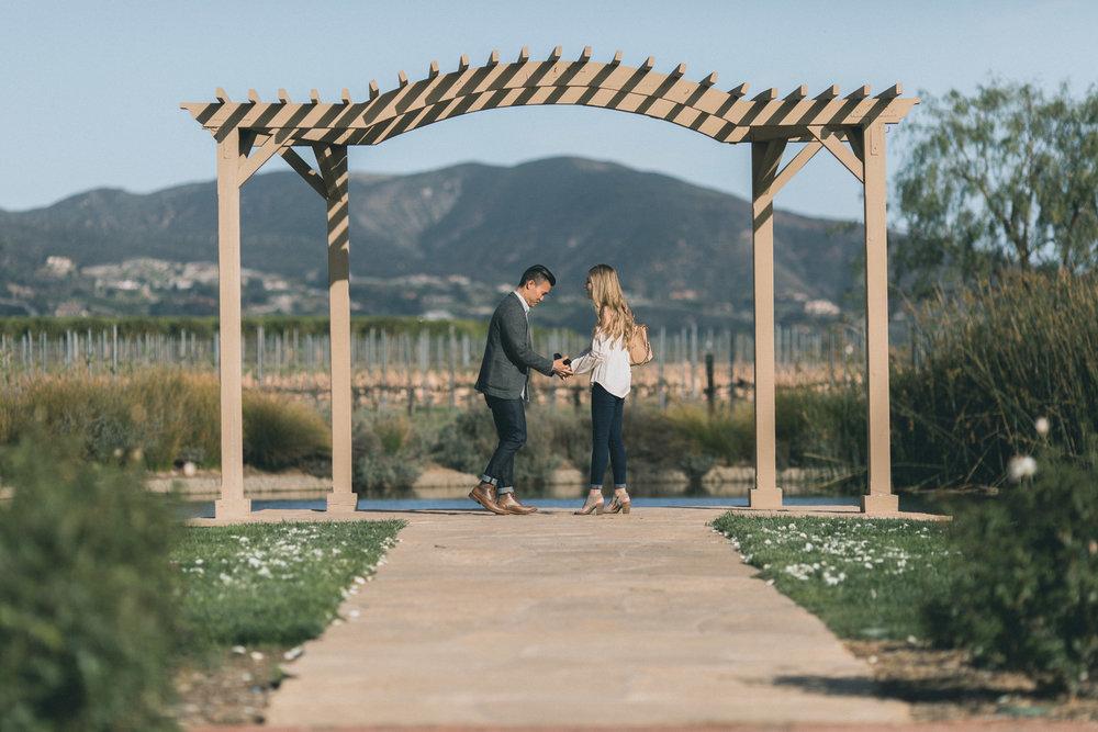 Sam & Rachael Proposal-12.jpg