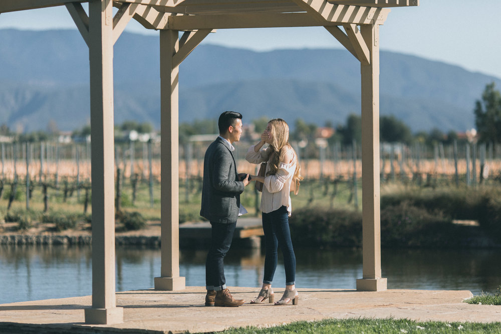 Sam & Rachael Proposal-31.jpg