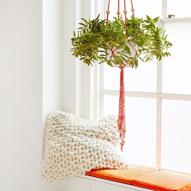 This hanging planter might look like it's made of macramé knots, but in fact it is a finger knitted pattern! Learn to create this painter by @flaxandtwine at koel-stories.com.