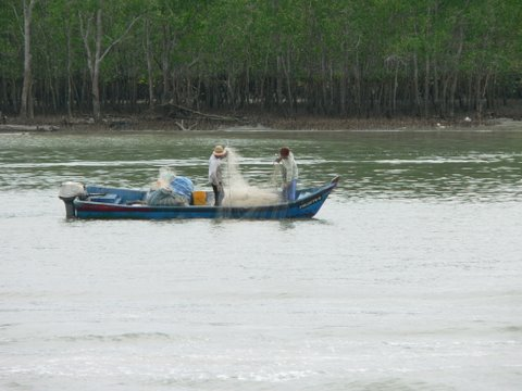 fishing is still a lifeline at kukup village.jpg