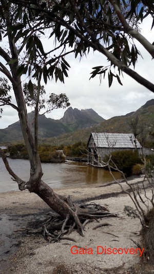 A boathouse sits solitary on the verge of a lake at Cradle Mountains National Park.