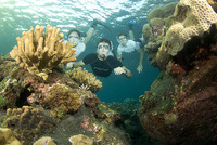 Learning to dive to help conserve corals.
