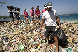 How many bags will clear this shore full of trash?