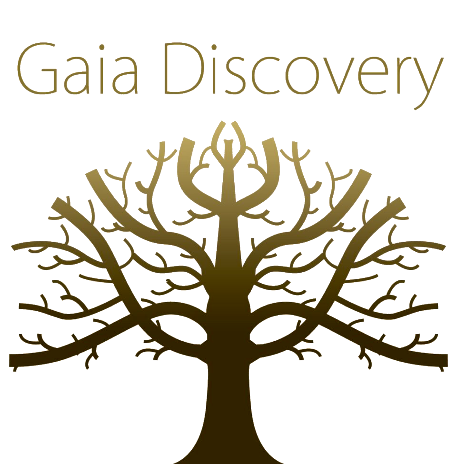 Gaia Discovery