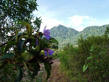 Free views with ecological discoveries while caving in Kuching.