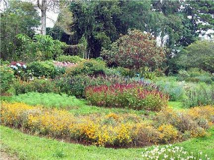 Flower Gardens at Eden Nature Park.
