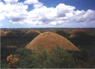 Amazing Chocolate Hills in Bohol.