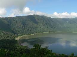 The unique Ngorongoro combination of high altitude and lush forests offers a haven for birdlife