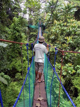 Skybridge at Macahambus Nature Park offers scenic views