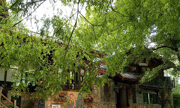 Django Guest House at Shuhe Old Town