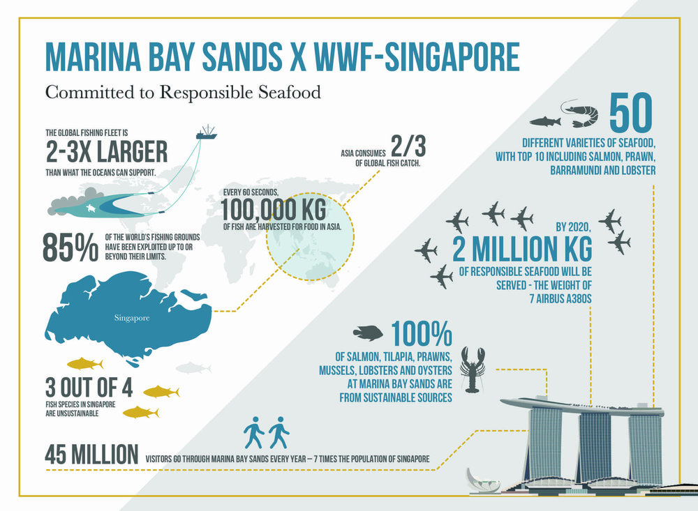 Infographic Chart on partnership plan between WWF and Marina Bay Sands