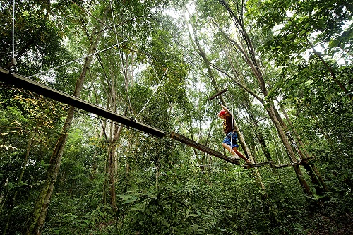 Cherating also runs trips into the surrounding jungle for its guests to enjoy and understand the ecology. Courtesy Club Med.
