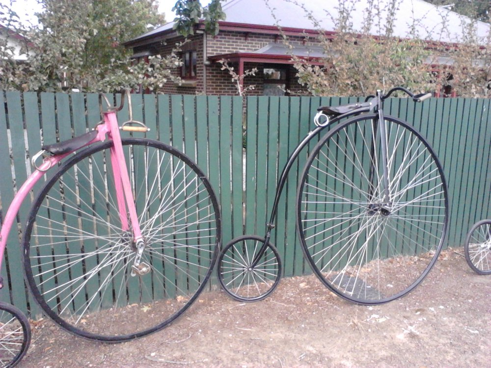 Penny farthings are everywhere during the National Champs in Evandale in February. Photo Gaia Discovery