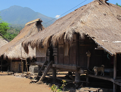 Traditional villages on Flores haven't changed much over the years. Courtesy KCLE.