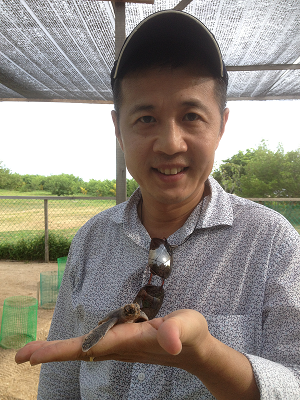 A turtle saved is nature's victory against all odds for Alexander Yee
