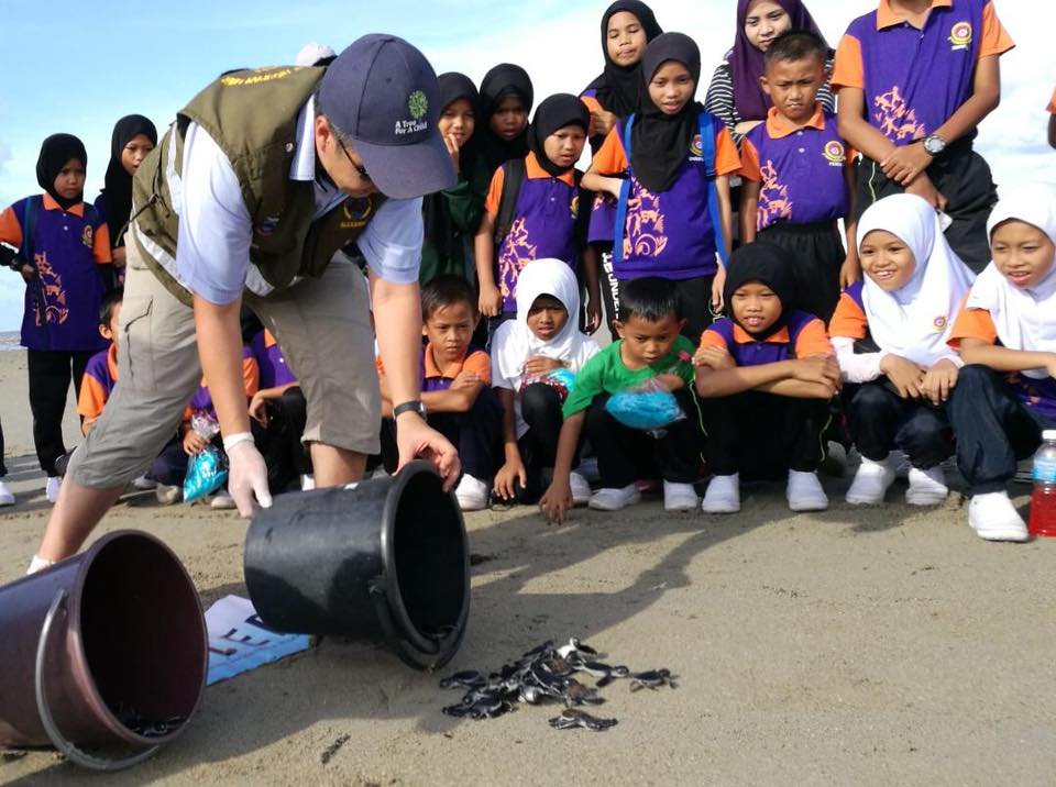 Alexander Yee of FOSTER releases the 30th thousand turtle hatchling on Libaran Island with the support of school children of the island.