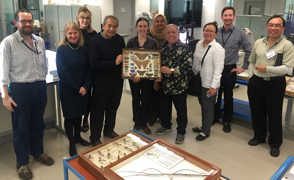 The Wallace Project - the teams from ECOMY and Yayasan Hasanah visit the digitisation work by the Project Collaborator, British Natural History Museum