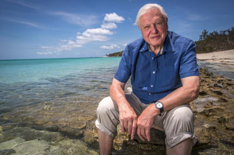 """We could actually do something about plastic, right now"" - David Attenborough. Courtesy Wikipedia."