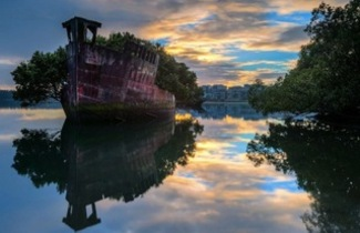 Trees Reclaim Shipwrecks In Sydney Harbour Gaia Discovery Over the time it has been ranked as high as 38 549 in the world, while most of its traffic comes from pakistan, where it reached as high as 834 position. gaia discovery