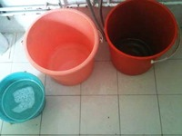 My bucket system: Red and Pink collect water; Blue for toilet flush
