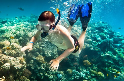 Snorkelling with sunscreen takes chemicals right to the heart of the reef. Courtesy Florida Keys