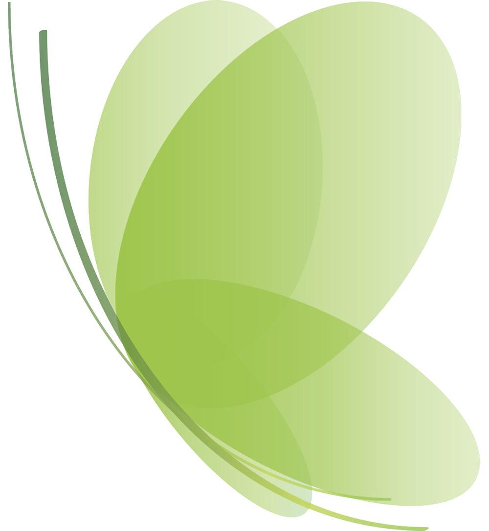 Walimo_logo copy-1 kopio.jpg