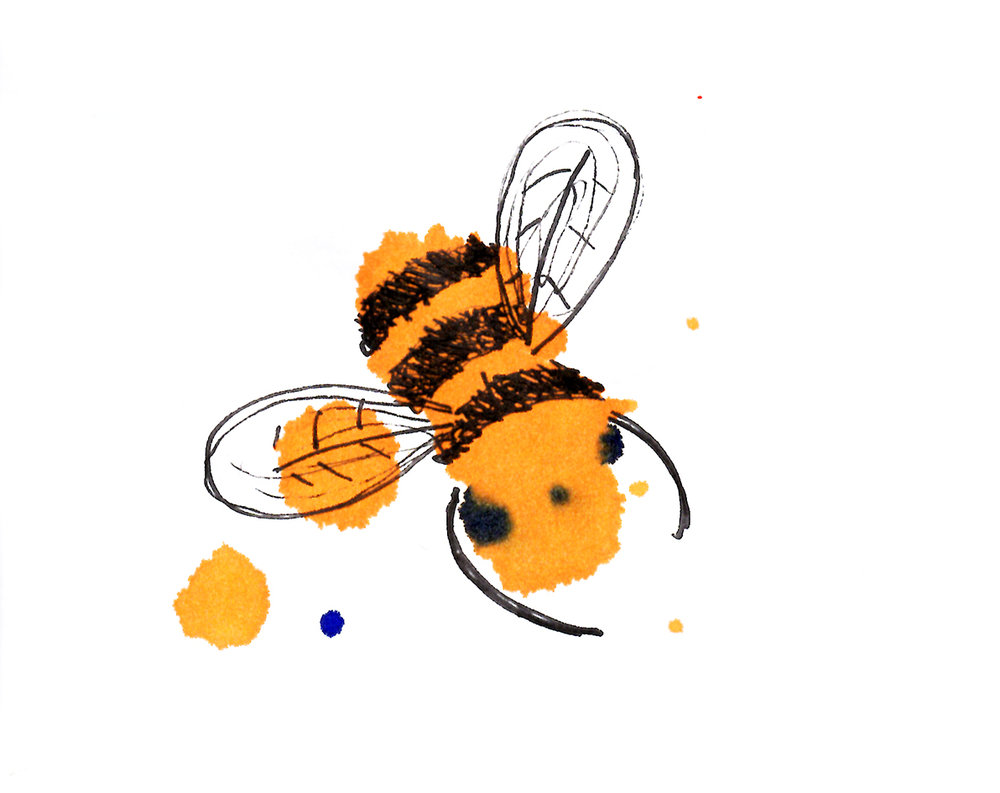 Watercolour bee