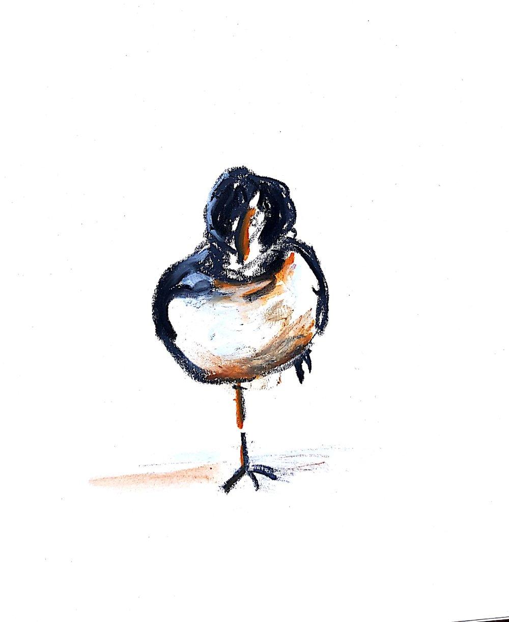 one leg bird plate.jpg