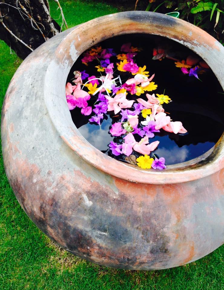 Bowl of Flowers.jpg