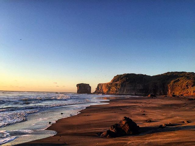 Maori Bay will always be a special place for us because it's the beach Simon proposed 2 years ago 💍😍 . . . #nature #photography #proposal #wedding #marriage #instagood #igers #gottalovenz #discover #inspiration #husbandandwife #photographer #couple #ig_newzealand #visitauckland #newzealand #explore #beach #sunset #goldenhour #travel #travelgram #travelphotography #beautiful #coast #canon #canonnz #nzmustdo #nz