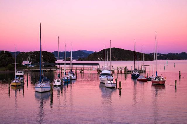 This photo makes me feel so peaceful. There is such a simple beauty in watching the sun rise and set. Every one of them is different. . . . #photography #sunset #sunrise #sun #beautiful #beach #harbour #boat #travelphotography #travelnewzealand #travelgram #photographer #pink #nature #adventure #bestoftheday #canon #canonnz #serene #inspiration #travel #explore #newzealand #nzmustdo #nz #discover #gottalovenz #igers #ig_newzealand #instagood