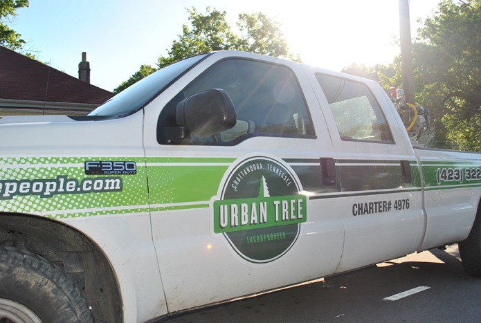 urban_tree_service_gallery_02.jpg
