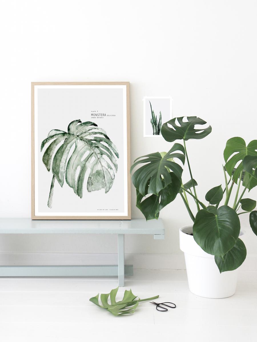 urban_botanic_aprilandmay