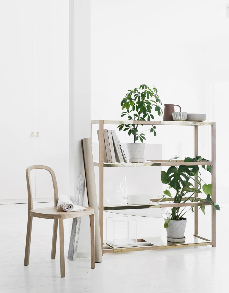 botanic-shelf-1