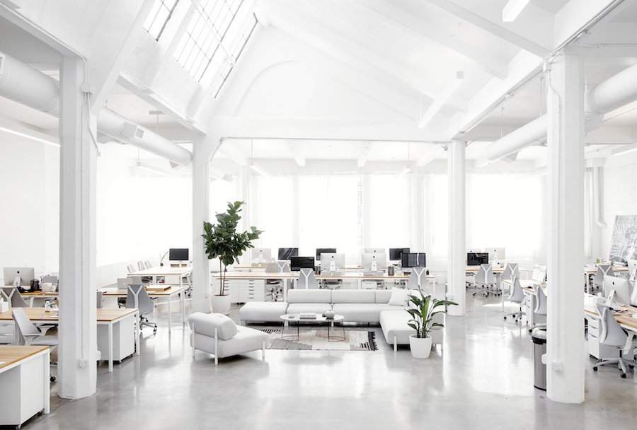 the-everlane-office-5