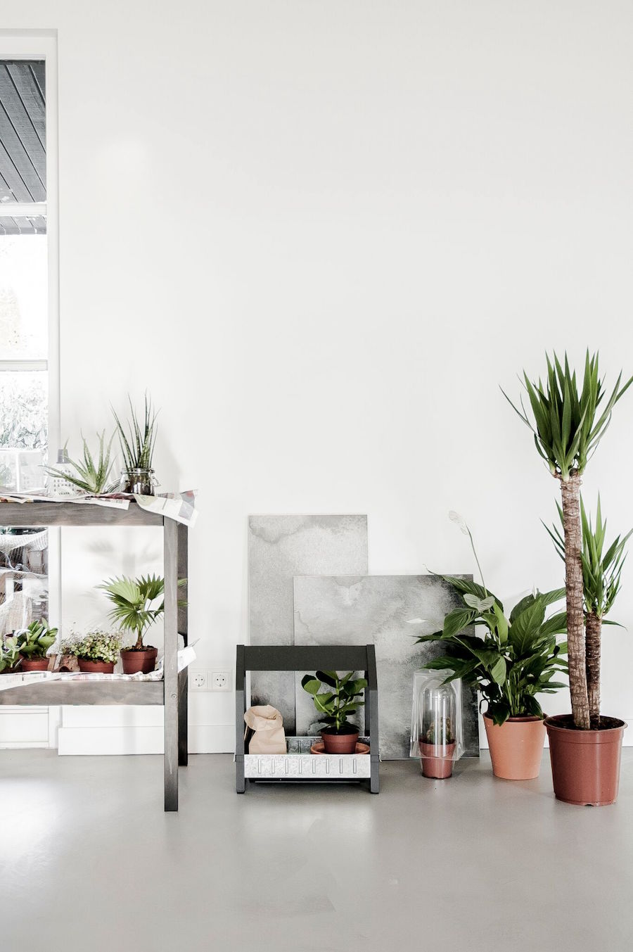 ikea-botanical-januari-6
