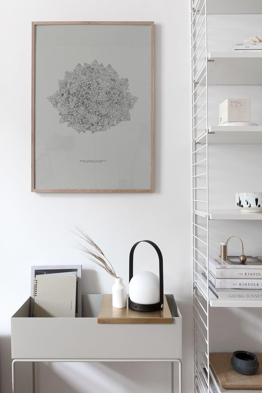 coco-lapine-design-prints-3.jpg
