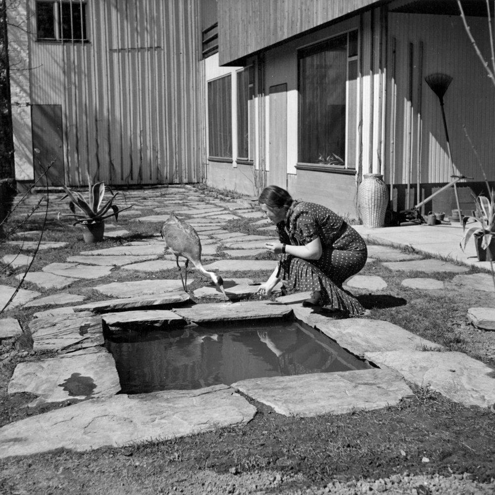 Aino_Aalto_garden_1930s.jpg