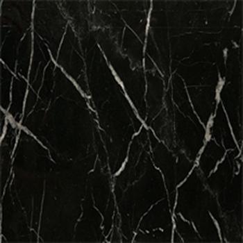 black marquina marble / marbre noir marquina