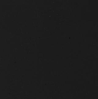 fenix negro ingo