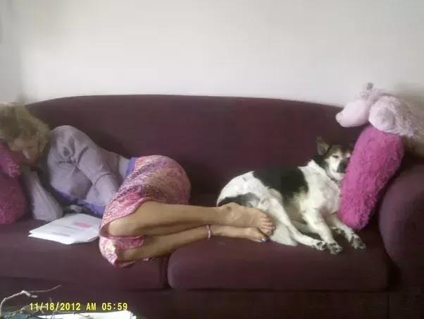 Sleepy_Dog.jpg