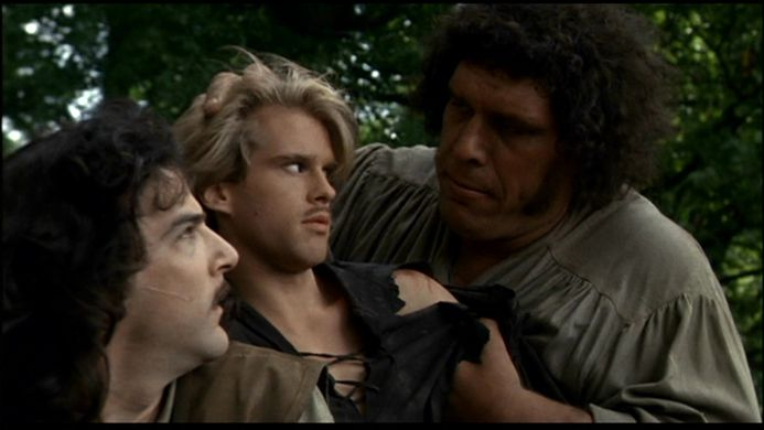 http_%2F%2Fimages2.fanpop.com%2Fimages%2Fphotos%2F4500000%2FThe-Princess-Bride-the-princess-bride-4562073-1280-720.jpg