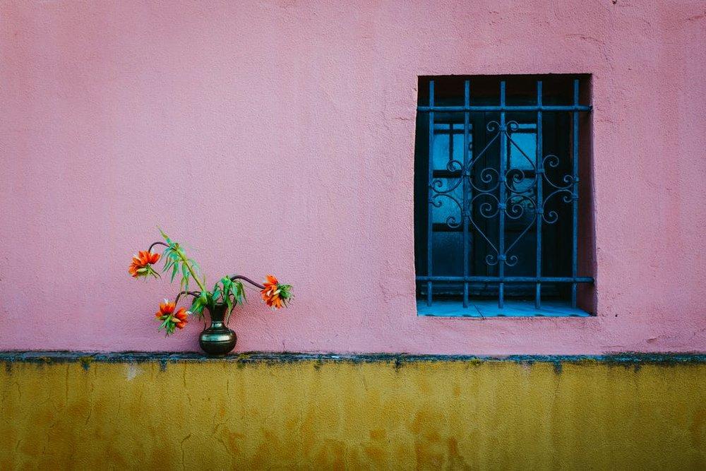 Pink+House.jpeg