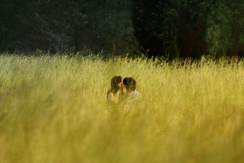 Field_Kisses.jpeg